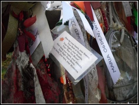 Crossbones Graveyard 4